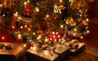 Почему на Новый год ставят ёлку