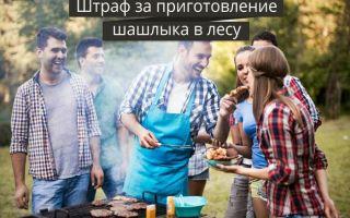 Штраф «за шашлыки»: как теперь жарить мясо на природе?