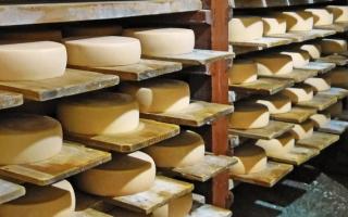 7 рецептов вкуснейших домашних сыров