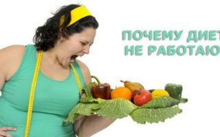 Почему не работают диеты для похудения