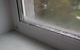 Как я избавилась от конденсата на пластиковых окнах