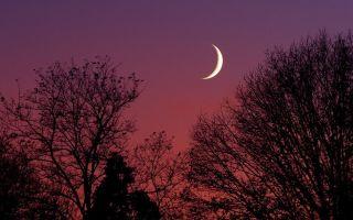 Что делать на растущую луну: список ритуалов