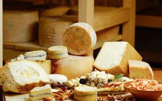 Как отличить настоящий сыр от подделки