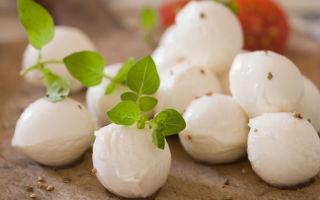 Сыр «моцарелла»: для чего используют и с чем едят