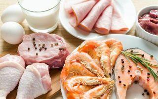 Как действует белковая диета и почему лучше от неё отказаться