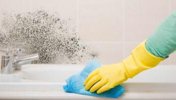 Как убрать плесень в ванне: народне средства и химия